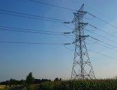 Ptaki a linie elektroenergetyczne